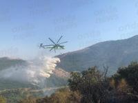Incendio boschivo a Polla. Continua a bruciare località Intagliata, interviene elicottero per lo spegnimento