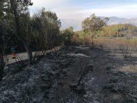 Incendio boschivo tra Atena Lucana e Sala Consilina. Continua a bruciare la vegetazione, Canadair in azione