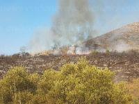 Camerota: vasto incendio in località Monte di Luna. Due elicotteri in azione