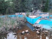 Erbacce, immondizia, locali distrutti. Il degrado del parco giochi del Centro Sportivo Meridionale di San Rufo