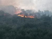 Vegetazione in fiamme ad Atena Lucana. Vigili del Fuoco e Servizio Antincendio all'opera per lo spegnimento