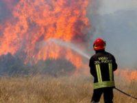 La Regione Campania approva il Piano Antincendio Boschivo. Stanziati 19 milioni di euro per l'estate