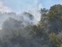 Atena Lucana: a poche ore dallo spegnimento riprende a bruciare la vegetazione in località Saracena