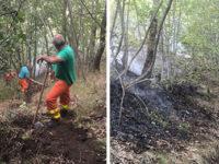 Sala Consilina: la bonifica del Servizio Antincendio Boschivo dopo il rogo in Foresta Cupone