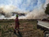 Incendi a Padula e a Caiazzano di Sassano. Interviene la Protezione Civile Vallo di Diano
