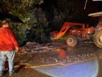 Maltempo, il fango invade la ex S.R. 94 a Salvitelle. Comune e Provincia in azione per la messa in sicurezza