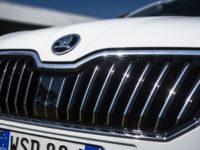 Atena Lucana: da Autohaus estensione della garanzia Skoda ad un prezzo esclusivo