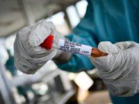 Coronavirus. Nuovi positivi a Capaccio Paestum, Casaletto Spartano e Torre Orsaia