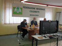 """Emergenza cinghiali in Basilicata. Coldiretti incontra deputati lucani: """"Battaglia sempre più forte"""""""