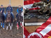 """Scerpo Cat, lo stallone dell'Erbanito di San Rufo vincitore del premio regionale """"The Best Horse"""""""