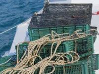 Contrasto alla pesca illegale. Sequestrate 20 nasse posizionate nelle acque di Salerno