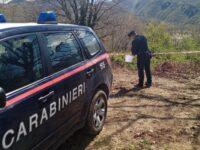 Taglio boschivo privo di autorizzazioni a Castelnuovo di Conza. Denunciato il responsabile