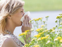 """""""In salute: consigli utili"""". L'allergia ai pollini: un ostacolo alla vita quotidiana, come ridurne gli effetti"""