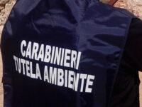 """Traffico illecito di rifiuti in tutta Italia. Scatta l'operazione """"All Black"""", un arresto a San Pietro al Tanagro"""