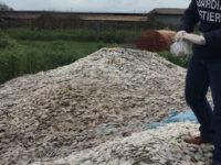Dischetti di plastica sversati in mare a Capaccio. 7 persone a processo