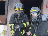 Incendio in un prefabbricato a Potenza. Intervengono i Vigili del Fuoco. Salvati due gattini