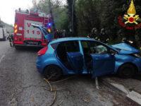 Auto sbanda e sbatte contro un albero a Potenza. Intervengono i Vigili del Fuoco