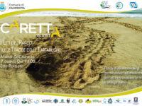 I Lidi del Parco del Cilento, Vallo di Diano e Alburni per la tutela dei nidi di tartaruga marina