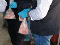 Squalo venduto in tranci come palombo in una pescheria ad Agropoli. Scattano sequestro e denuncia