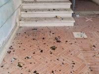 Atti vandalici nel centro storico di Teggiano. Individuati i responsabili grazie alla videosorveglianza del Comune