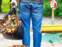 Padula: 6 percettori di Reddito di cittadinanza per la manutenzione, riqualificazione e pulizia del territorio