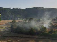 """Montesano: incendio in località """"Magorno"""". I cittadini si adoperano per domare le fiamme"""