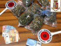 Capaccio: realizza sul terrazzo di casa una serra per coltivare la marijuana. 36enne in manette