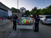 Blitz della Municipale sul litorale di Ascea. Sequestrati ombrelloni sulla spiaggia libera usati come segnaposto