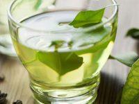 Farmacia 3.0: i benefici del tè verde – rubrica a cura del dott. Alberto Di Muria