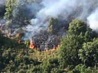 Incendio boschivo a Buccino. Guardie ambientali, Vigili del Fuoco e operai in azione
