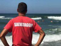 Tenta di impedire l'uccisione di una medusa a Castellabate. Bagnino picchiato da un bagnante finisce in ospedale