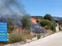 Incendio in contrada Petrosa a Buccino. Task force in azione per domare il rogo