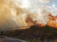 Vasto incendio in un bosco tra Salvitelle e Caggiano. Fiamme minacciano le abitazioni