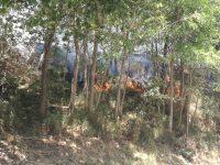 Incendio a Vietri di Potenza. Intervengono i Vigili del Fuoco