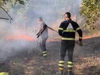 """Vietri di Potenza, operatori antincendio salvano dalle fiamme serre e abitazioni. Il ringraziamento di un cittadino: """"Encomiabili"""""""