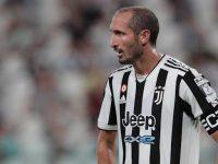 Regalo speciale a Vietri di Potenza. Per il piccolo Kenny arriva la maglia della Juventus dal calciatore Giorgio Chiellini