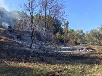 Incendio ad Auletta. Le fiamme distruggono alberi e vegetazione in contrada Scaffa