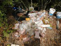 Tramutola: abbandona rifiuti ma viene scoperto grazie a supporti informatici trovati nella spazzatura