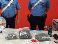 Trovato in casa con oltre 400 grammi di marijuana. Arrestato 33enne a Salerno