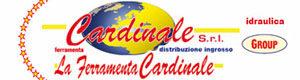cardinale generico 300x80
